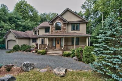 Pocono Pines PA Single Family Home For Sale: $359,000