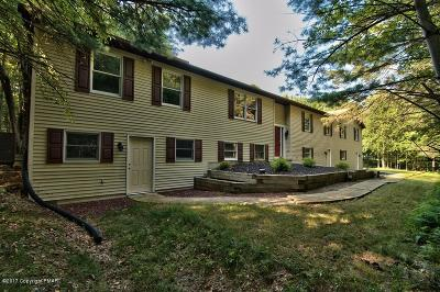 Palmerton Single Family Home For Sale: 55 Laurel Way