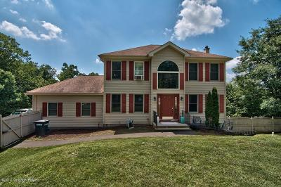Stroudsburg Single Family Home For Sale: 201 Michael Ln