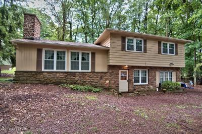 Lake Harmony Single Family Home For Sale: 14 Sassafras Rd