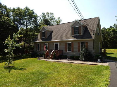 Towamensing Trails Single Family Home For Sale: 784 Stony Mountain Rd