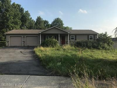 Pen Argyl Single Family Home For Sale: 1609 Teels Rd