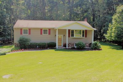 Tannersville Single Family Home For Sale: 111 Big Oak Ln