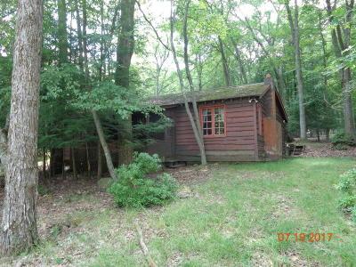 Lake Harmony Single Family Home For Sale: 9 aka 6 Split Rock Rd