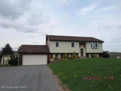 Kunkletown Single Family Home For Sale: 55 Smith Dr