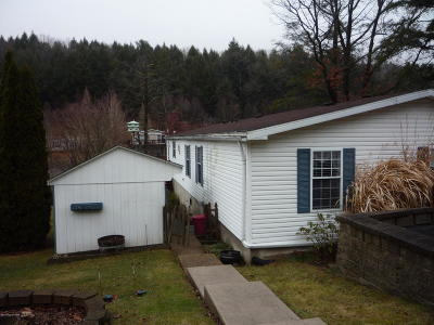 Saylorsburg Single Family Home For Sale: 1224 Blue Mountain Circle