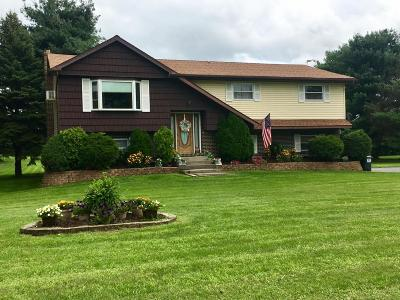 Brodheadsville Single Family Home For Sale: 305 Shiffer Lane
