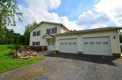 Saylorsburg Single Family Home For Sale: 123 Koonie Kreger Rd