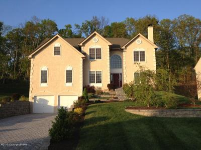 East Stroudsburg Single Family Home For Sale: 211 Spyglass Ct