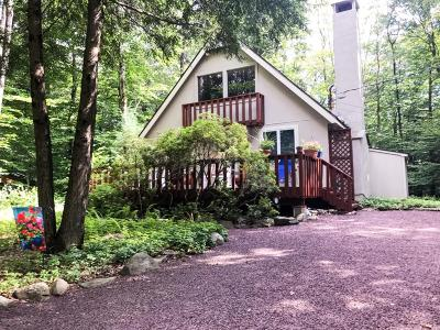 Pocono Pines PA Single Family Home For Sale: $142,900