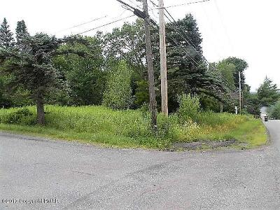 Blakeslee Residential Lots & Land For Sale: Pa Rt 940 3
