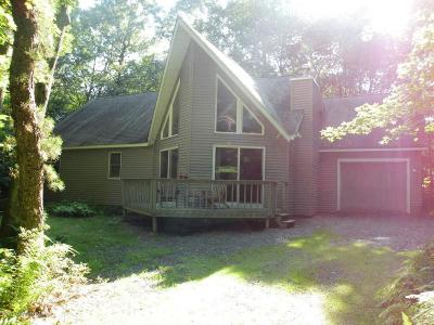 Towamensing Trails Single Family Home For Sale: 198 Ginsburg Cir