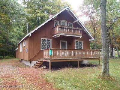 Pocono Lake Single Family Home For Sale: 117 Shawnee Dr