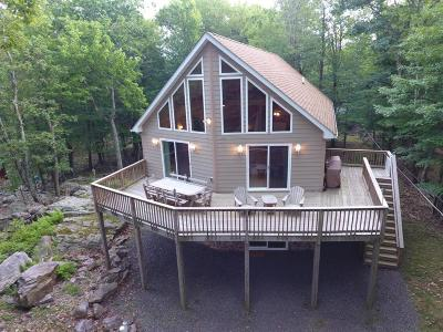 Lake Harmony Single Family Home For Sale: 77 Split Rock Rd