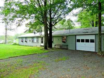 Pocono Lake Single Family Home For Sale: 7524 Lake Shore Drive