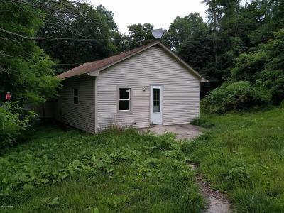 Saylorsburg Single Family Home For Sale: 3350 Mountain
