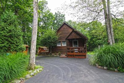 Canadensis Single Family Home For Sale: 133 Maple Rd