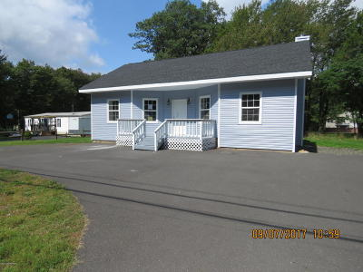 Pocono Summit Single Family Home For Sale: 306 Summit Ave