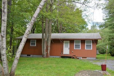 Pocono Lake Single Family Home For Sale: 143 Orono Dr