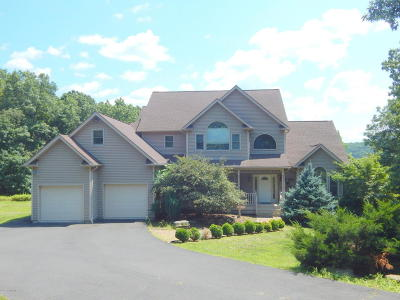 Tannersville Single Family Home For Sale: 3323 Mountain View Dr
