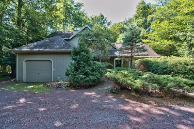 Pocono Pines Single Family Home For Sale: 110 Blue Spruce Crescent