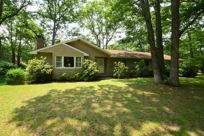 Kunkletown Single Family Home For Sale: 279 Scheller Hill Rd.