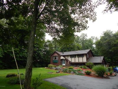 Pocono Lake Single Family Home For Sale: 1546 Route 940