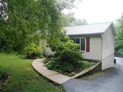 Jim Thorpe Single Family Home For Sale: 90 Alpine Drive