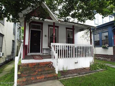 Jim Thorpe Single Family Home For Sale: 131 South St