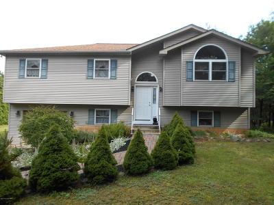 Albrightsville Single Family Home For Sale: 303 Petrarch Trail