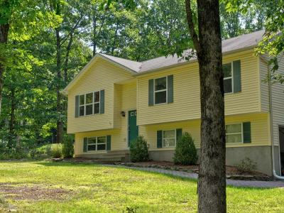 Stroudsburg Single Family Home For Sale: 306 Pennbrook Rd