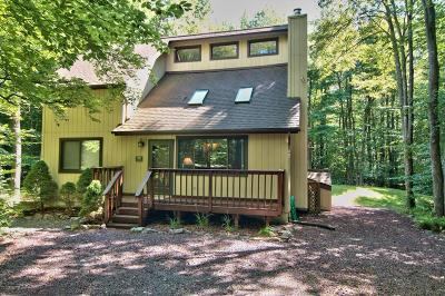 Pocono Pines Single Family Home For Sale: 199 Cumberland Rd