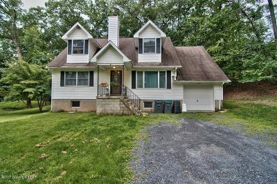 East Stroudsburg Single Family Home For Sale: 223 Footprint Rd