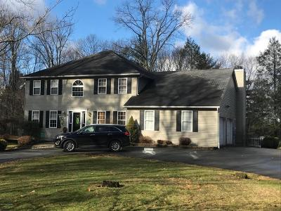 Saylorsburg Single Family Home For Sale: 226 Longwoods Dr