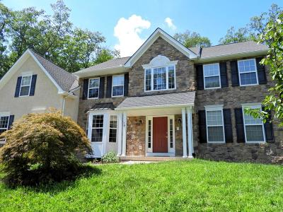 East Stroudsburg Single Family Home For Sale: 404 Shawnee Valley Drive