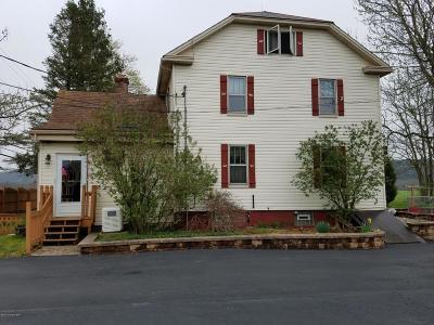Kunkletown Single Family Home For Sale: 945 Silver Spring Blvd