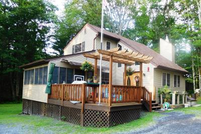 Stroudsburg Single Family Home For Sale: 111 Chestnut Drive