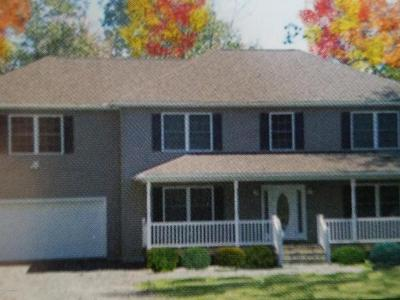 East Stroudsburg Single Family Home For Sale: Berwick Hts