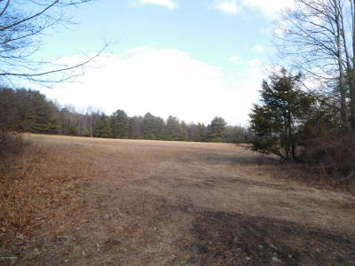 Stroudsburg Residential Lots & Land For Sale: 250 Sawmill Rd