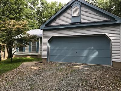 Albrightsville Single Family Home For Sale: 102 Jonas Mountain Dr