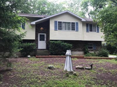 Kunkletown Single Family Home For Sale: 132 Ash Ln