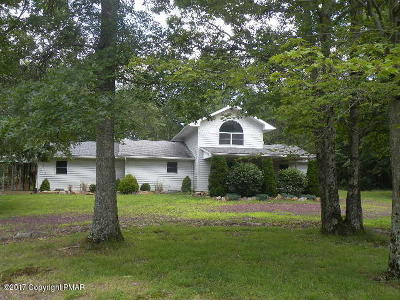 Jim Thorpe Single Family Home For Sale: 84 Deer View Dr