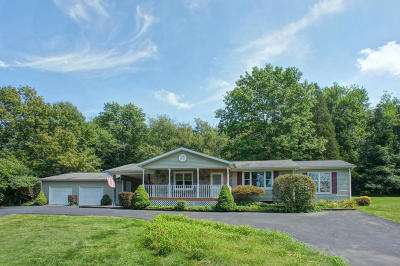 Saylorsburg Single Family Home For Sale: 5638 Cherry Valley Road