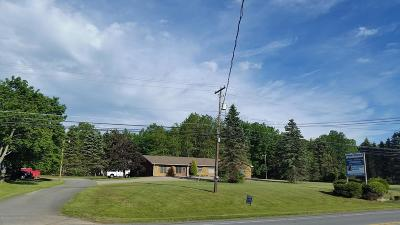 Jim Thorpe Single Family Home For Sale: 1554 State Route 903
