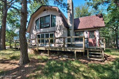 Long Pond Single Family Home For Sale: 390 Clearview Dr