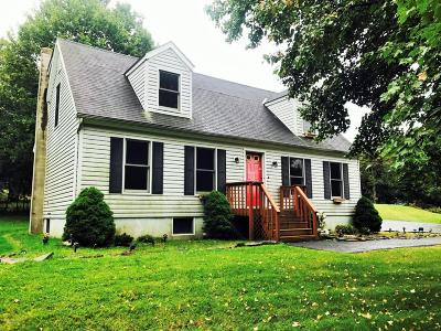 Blakeslee Single Family Home For Sale: 225 Ryan Rd