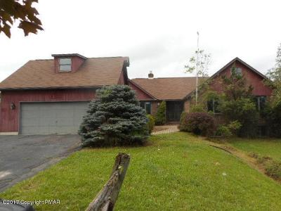 Brodheadsville Single Family Home For Sale: 221 Frantz Rd