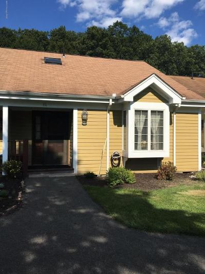 Stroudsburg Single Family Home For Sale: 46 Dragon Fly Cir