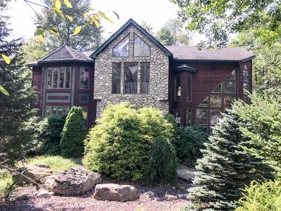 Lake Harmony Single Family Home For Sale: 37 Kent Clarke Rd