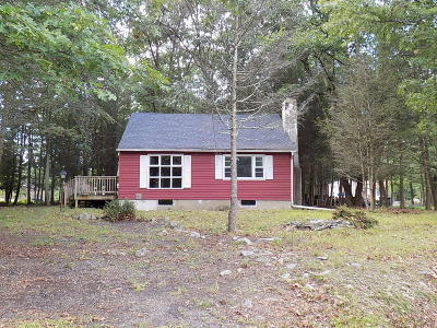 East Stroudsburg Single Family Home For Sale: 243 Shawnee Dr
